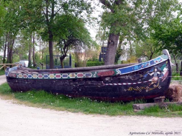 Oasi Valle Averto, Laguna di Venezia