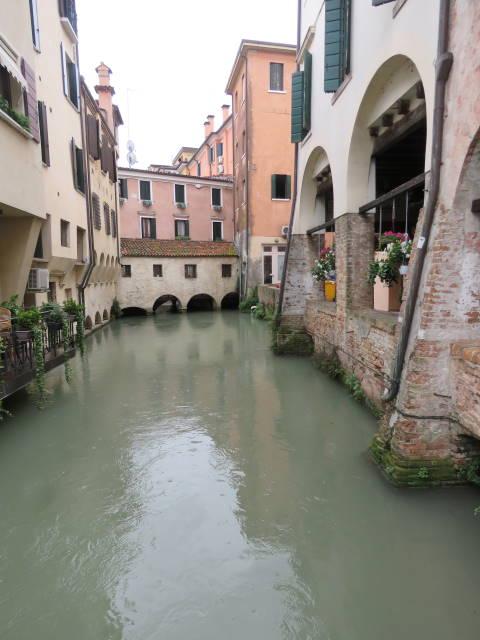 Treviso, Buranelli, Veneto